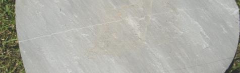 autumn-grey-plokste_1457707323-08252b0e621b09777c8943a13b986caa.jpg