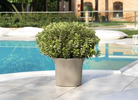 flora-049-ambientato_1500052588-b78e0e79e7a8645fa058b1b970c230c7.jpg