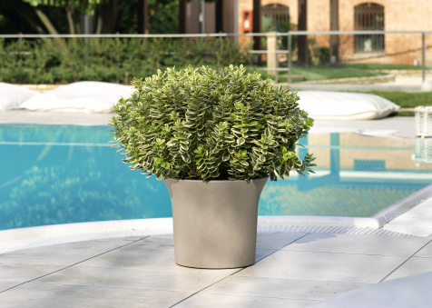 flora-049-ambientato_1500052588-efbcde1420eaf14236bc684cce80a9aa.jpg